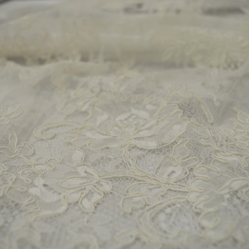 Ivory embroidered lace fabric