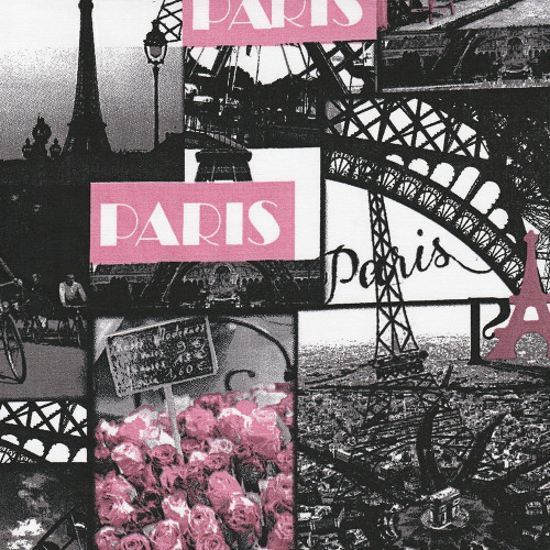 Tissu popeline 100% coton Paris